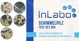 Original InLabo Schimmelpilz Schnelltest - Der Schimmeltest für zu Hause für bis zu 5 Räume - 1